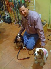 three dog bakery cavaliers
