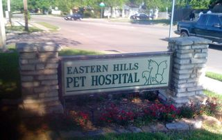 cavalier rescue, eastern hills pet hospital