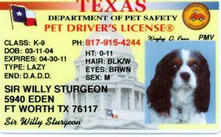 willie drivers lic 051509